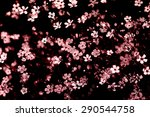gypsophila flower in vintage... | Shutterstock . vector #290544758