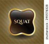 squat shiny emblem   Shutterstock .eps vector #290578328