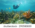 Man Snorkeling Underwater Look...
