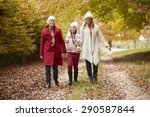female multl generation family... | Shutterstock . vector #290587844