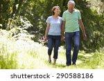 senior couple walking in summer ... | Shutterstock . vector #290588186
