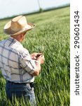 senior farmer in a field... | Shutterstock . vector #290601434