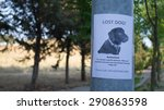 Small photo of MIssing poster