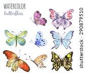 butterfly  watercolor...