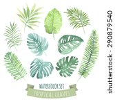 watercolor set with tropical... | Shutterstock .eps vector #290879540