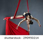 elegant female dance posing on... | Shutterstock . vector #290950214