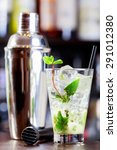 mojito cocktail and shaker shot ... | Shutterstock . vector #291012380