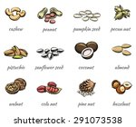 nuts icons set. food peanut and ... | Shutterstock . vector #291073538