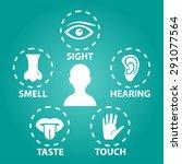 five senses vector  icon set | Shutterstock .eps vector #291077564