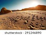 foot prints in the desert at... | Shutterstock . vector #291246890