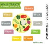 key nutrients in fruits and... | Shutterstock .eps vector #291288320