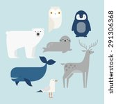 vector set arctic and antarctic ... | Shutterstock .eps vector #291306368