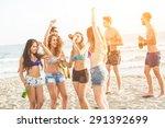 multiracial group of friends...   Shutterstock . vector #291392699