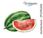 watercolor fruit watermelont... | Shutterstock .eps vector #291396206