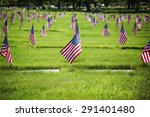 Flag On The Graves Of Soldiers...