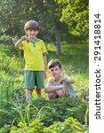 two kids in garden with... | Shutterstock . vector #291418814
