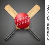 vector illustration of cricket... | Shutterstock .eps vector #291427223