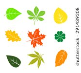 colorful autumn leaves set on... | Shutterstock .eps vector #291439208