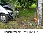 car accident with a tree | Shutterstock . vector #291464114