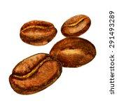 watercolor coffee beans. vector ... | Shutterstock .eps vector #291493289