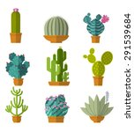 Vector Collection Of Cactus In...