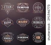 set of hipster vintage labels ... | Shutterstock .eps vector #291546773
