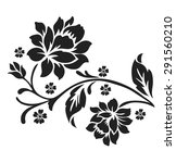 Flower Design Elements Vector.