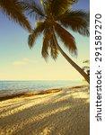 art beautiful retro seaside... | Shutterstock . vector #291587270