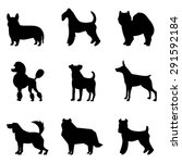 Stock vector dogs silhouettes 291592184