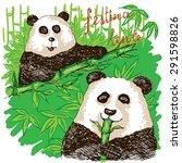 hand drawn two cute pandas... | Shutterstock .eps vector #291598826