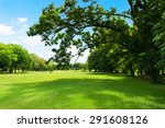 green park and tree with blue... | Shutterstock . vector #291608126