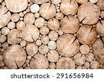 tree stumps background trees... | Shutterstock . vector #291656984