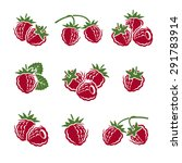raspberry set. vector | Shutterstock .eps vector #291783914