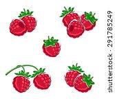 raspberry set. vector | Shutterstock .eps vector #291785249