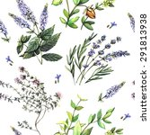 watercolor decorative pattern... | Shutterstock .eps vector #291813938