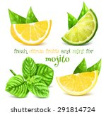 fresh lemon  lime and and mint... | Shutterstock .eps vector #291814724