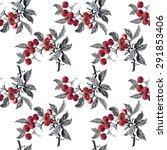 watercolor garden rowan plant... | Shutterstock . vector #291853406