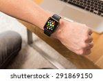 hand wearing elegant smart... | Shutterstock . vector #291869150