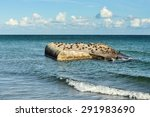 world war two bunker with the... | Shutterstock . vector #291983690