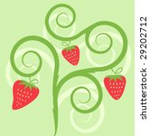 vector strawberry illustration | Shutterstock .eps vector #29202712