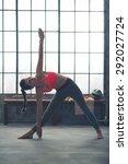 a strong  muscular woman is... | Shutterstock . vector #292027724