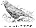 vector rook drawn in pencil on... | Shutterstock .eps vector #292153943