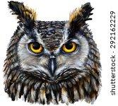Eagle Owl  Digital Painting  ...