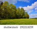 spring landscape with yellow... | Shutterstock . vector #292213259