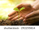 hands of farmer growing and... | Shutterstock . vector #292255814