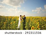 happy marriage couple at the... | Shutterstock . vector #292311536