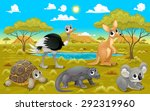Australian Animals In A Natura...
