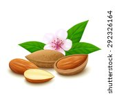 Almond In Shell  Half Of Almon...