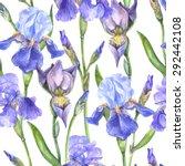 vector seamless botanical... | Shutterstock .eps vector #292442108