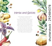 watercolor herbs and spices... | Shutterstock .eps vector #292484378